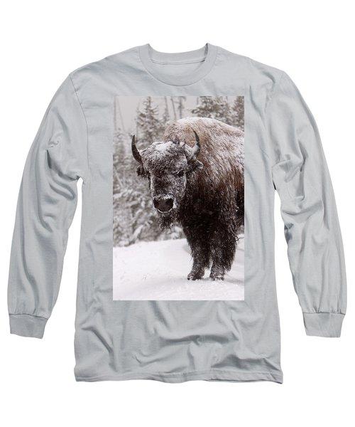 Ice Cold Winter Buffalo Long Sleeve T-Shirt