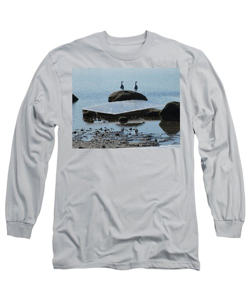 Ice Monolith Long Sleeve T-Shirt