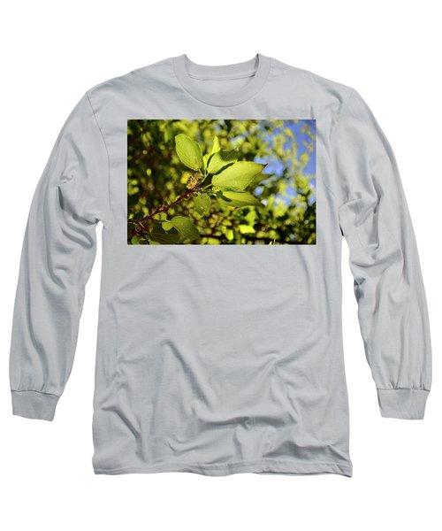 Illuminated Leaves Long Sleeve T-Shirt
