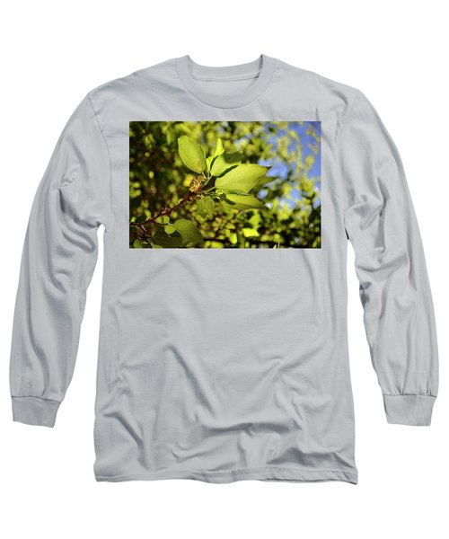 Illuminated Leaves Long Sleeve T-Shirt