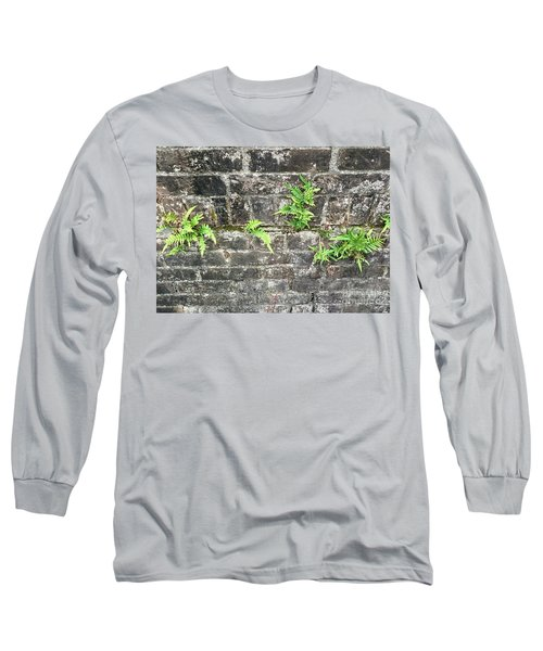 Intrepid Ferns Long Sleeve T-Shirt by Kim Nelson