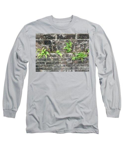 Intrepid Ferns Long Sleeve T-Shirt