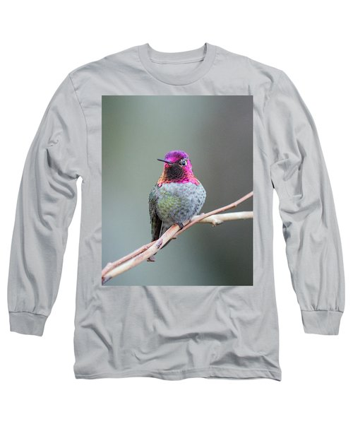 Karisa's Hummingbird.1 Long Sleeve T-Shirt