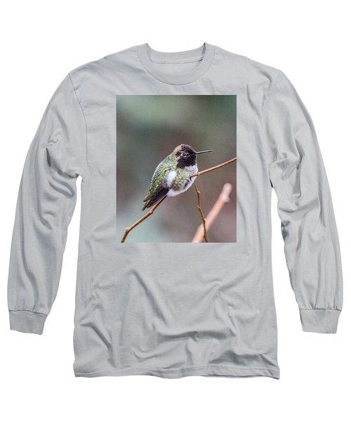 Karisa's Hummingbird.2 Long Sleeve T-Shirt by E Faithe Lester