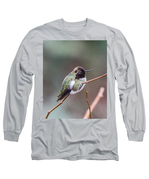 Karisa's Hummingbird.2 Long Sleeve T-Shirt