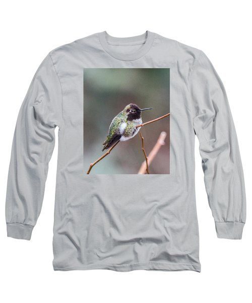 Karisa's Hummingbird.2 Long Sleeve T-Shirt