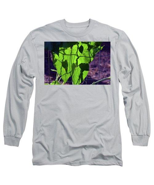 Leaf Shadows Long Sleeve T-Shirt