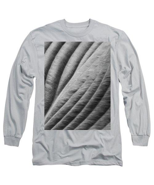 Leaf - Softness Long Sleeve T-Shirt by Ben and Raisa Gertsberg
