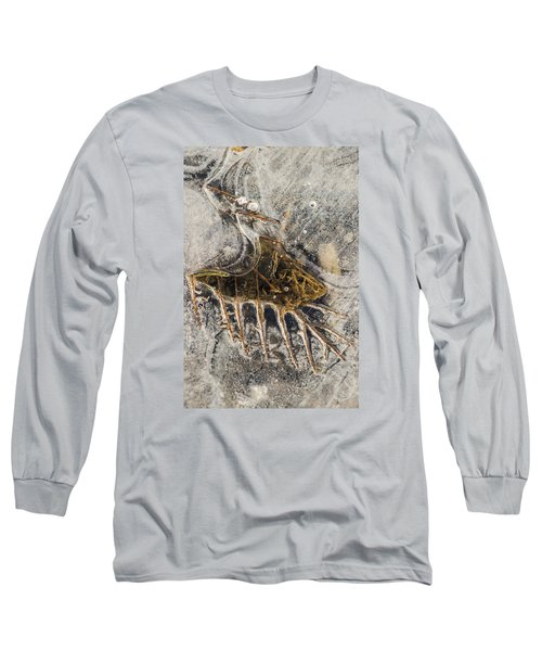 Leaf Veins In Ice Long Sleeve T-Shirt