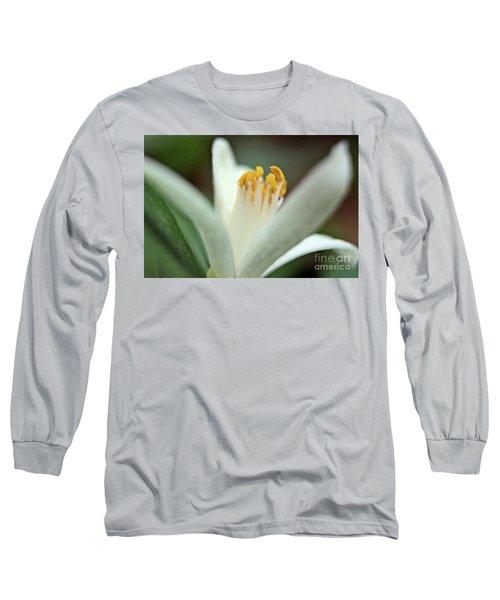 Lemon Flower 2018 Long Sleeve T-Shirt
