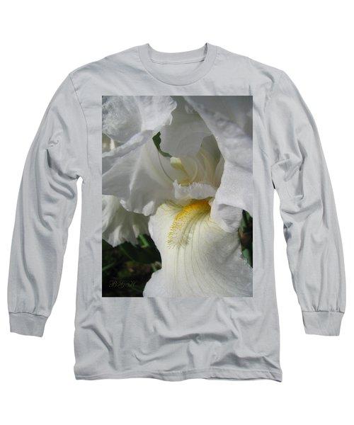 Long Sleeve T-Shirt featuring the photograph Like Angel Wings by Brooks Garten Hauschild