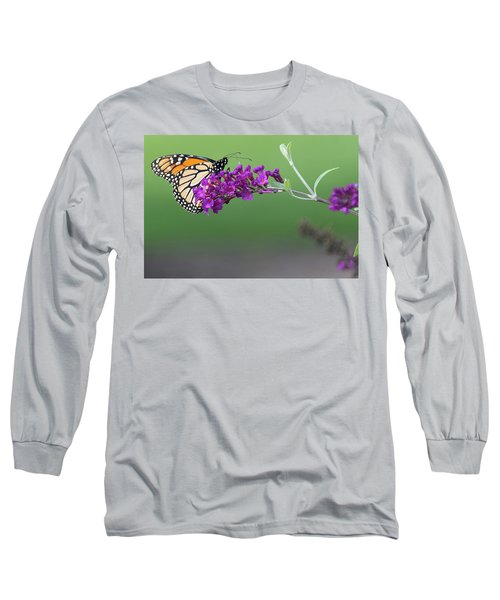 Little Wing Long Sleeve T-Shirt by Angelo Marcialis