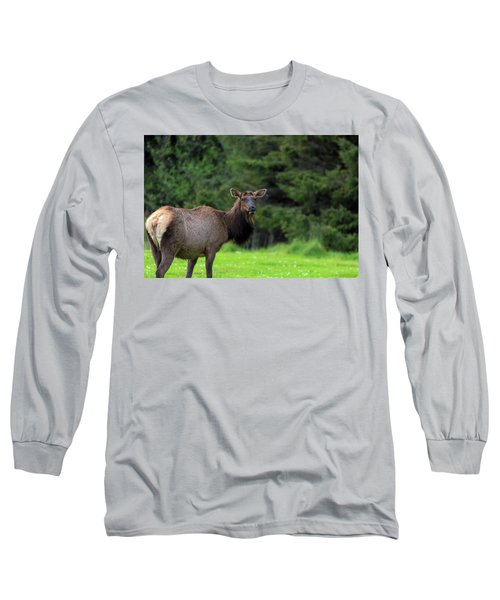 Lone Elk At Ecola State Park Long Sleeve T-Shirt