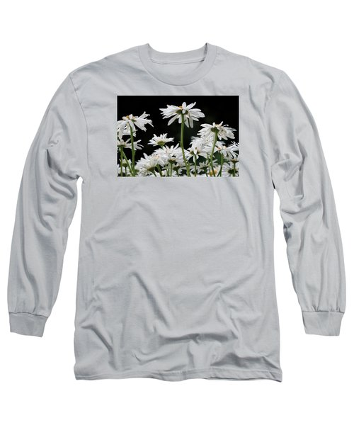 Looking Up At At Daisies Long Sleeve T-Shirt by Dorothy Cunningham