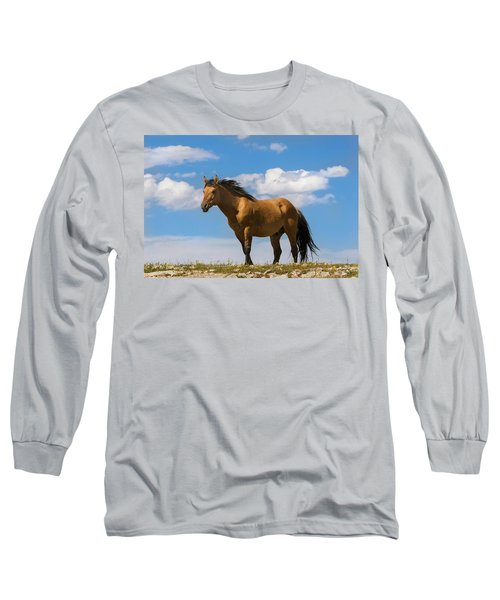 Magnificent Wild Horse Long Sleeve T-Shirt