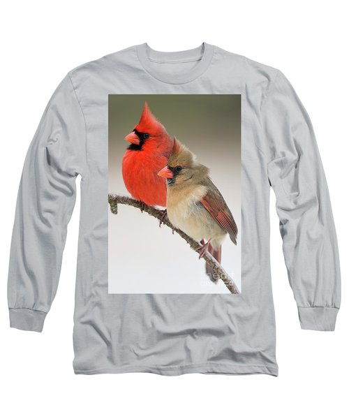 Male And Female Northern Cardinals On Pine Branch Long Sleeve T-Shirt