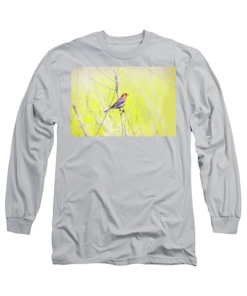 Male Finch On Bare Branch Long Sleeve T-Shirt