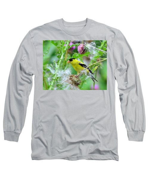 Male Goldfinch Long Sleeve T-Shirt by Kathy Eickenberg