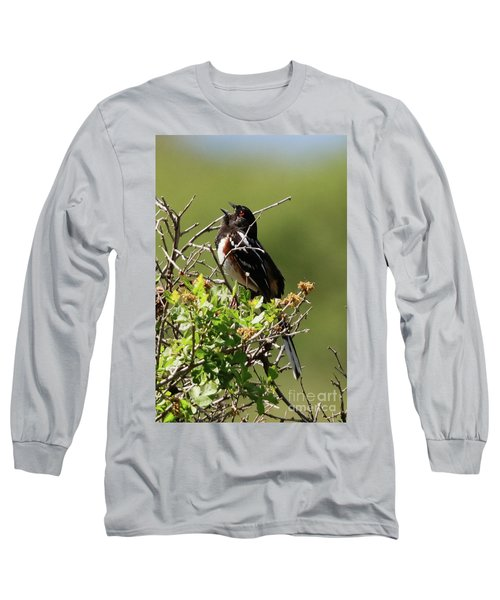 Male Spotted Towhee Long Sleeve T-Shirt