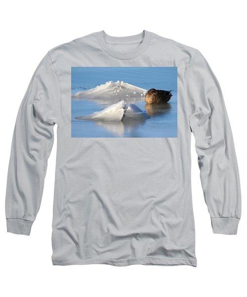Mallard Duck Mount Sinai New York Long Sleeve T-Shirt by Bob Savage