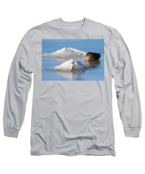 Mallard Duck Mount Sinai New York Long Sleeve T-Shirt