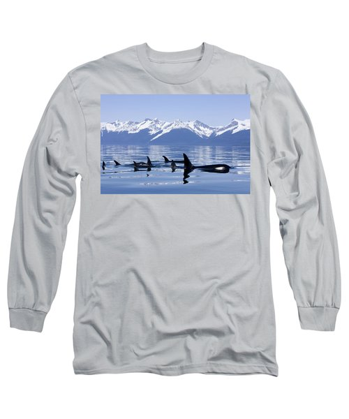 Many Orca Whales Long Sleeve T-Shirt by John Hyde - Printscapes