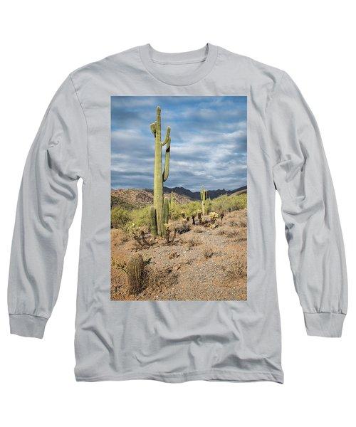 Mcdowell Cactus Long Sleeve T-Shirt