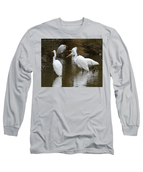 Long Sleeve T-Shirt featuring the photograph Meeting Of The Egrets by George Randy Bass