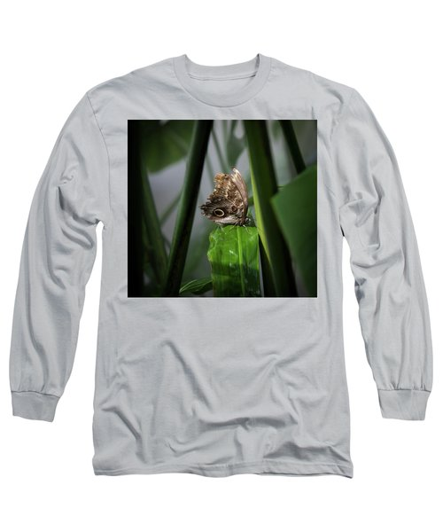 Long Sleeve T-Shirt featuring the photograph Misty Morning Owl by Karen Wiles