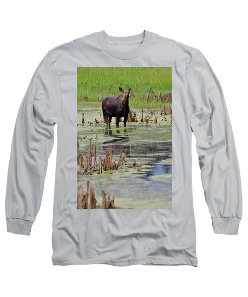 Moose Enjoying Dinner Long Sleeve T-Shirt by Matt Helm