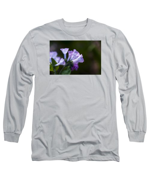 Morning Bluebells Long Sleeve T-Shirt by Dan Hefle