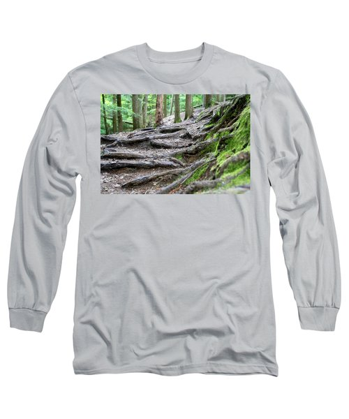Moss Glen Falls - Vermont Long Sleeve T-Shirt