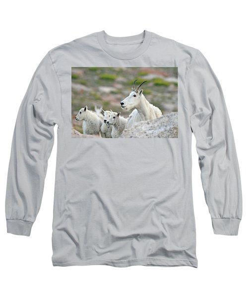 Long Sleeve T-Shirt featuring the photograph Mountain Goat Family by Scott Mahon