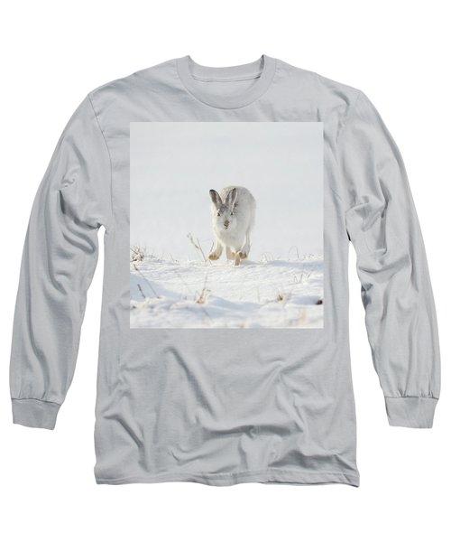 Mountain Hare Approaching Long Sleeve T-Shirt