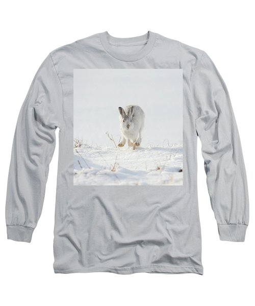 Mountain Hare Approaching Long Sleeve T-Shirt