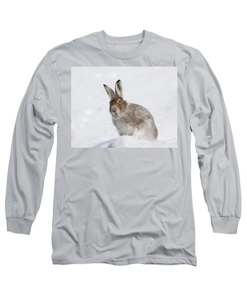 Long Sleeve T-Shirt featuring the photograph Mountain Hare In Winter by Karen Van Der Zijden