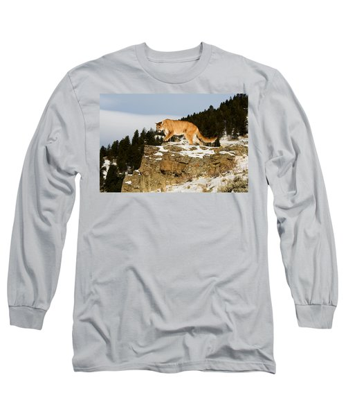 Mountain Lion On Rocks Long Sleeve T-Shirt