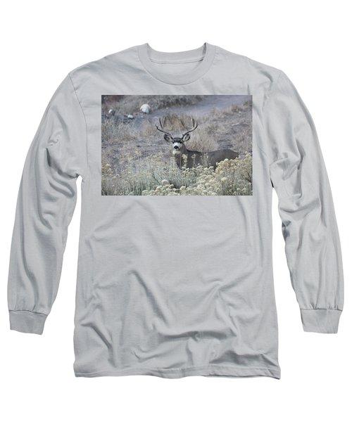 Muledeerbuck5 Long Sleeve T-Shirt