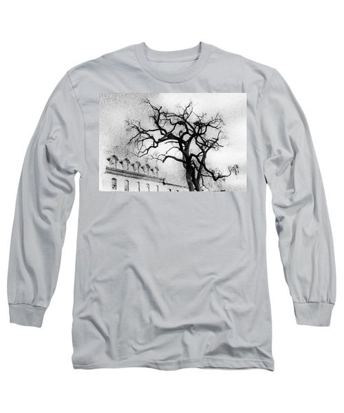 Naked Tree Long Sleeve T-Shirt by Celso Bressan