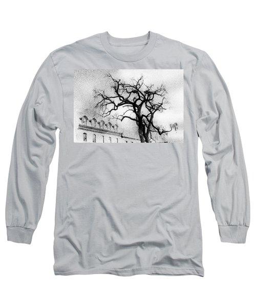 Naked Tree Long Sleeve T-Shirt