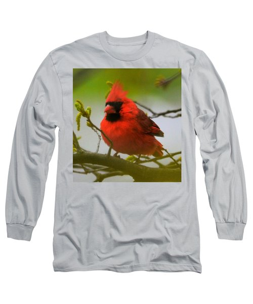 North Carolina Cardinal Long Sleeve T-Shirt
