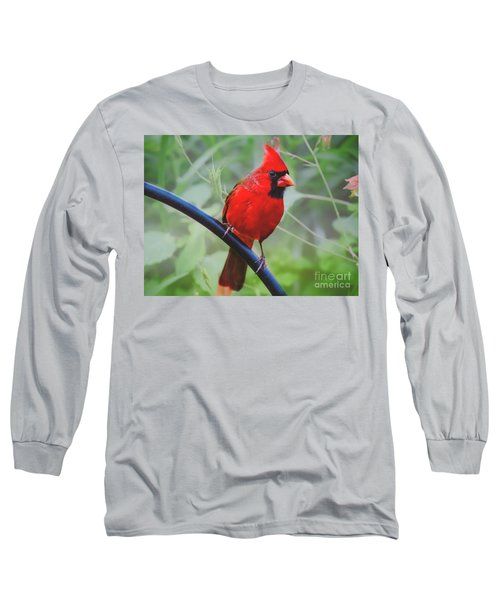 Northern Male Red Cardinal Bird Long Sleeve T-Shirt by Peggy Franz
