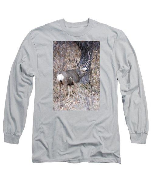 Old Orchard II Long Sleeve T-Shirt
