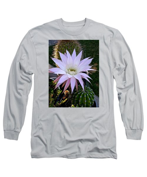 One Day Wonder Long Sleeve T-Shirt by Amelia Racca