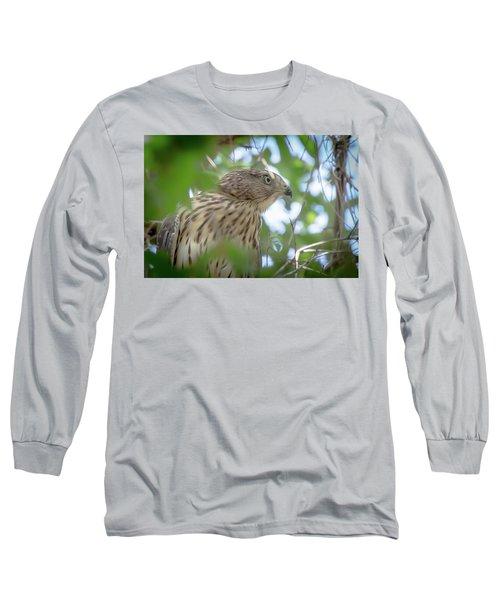 Red-shouldered Hawk Fledgling 1 Long Sleeve T-Shirt