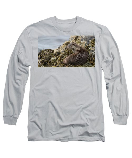 Otter Relaxing On Rocks Long Sleeve T-Shirt