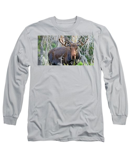 Long Sleeve T-Shirt featuring the photograph Overlooking Moose by Scott Mahon