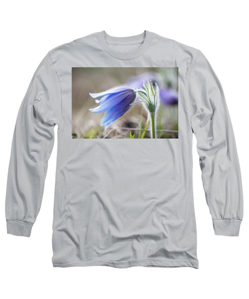 Pasque Flower's Silver Grey Hair Long Sleeve T-Shirt