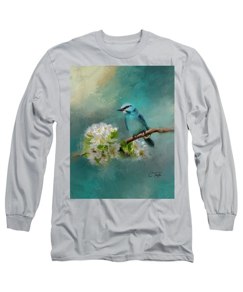 Peaceful Symphony  Long Sleeve T-Shirt by Colleen Taylor