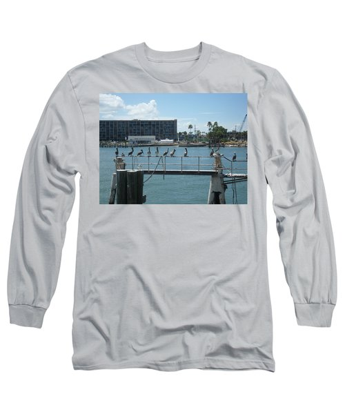 Pelicans In A Row Long Sleeve T-Shirt by Val Oconnor